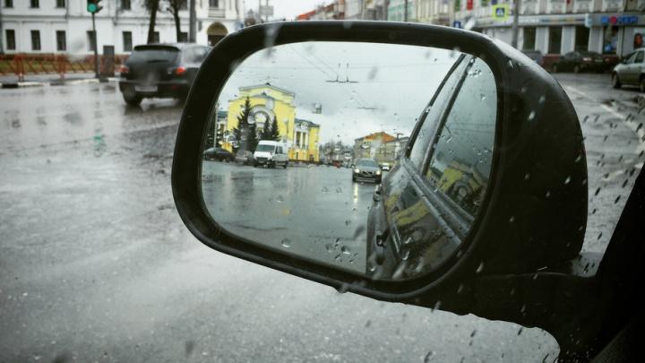 Синоптики обещают в Ярославле неделю дождей