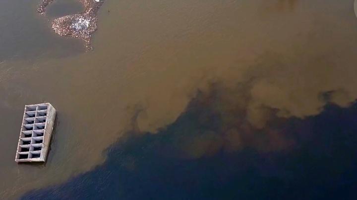 В Волгограде сняли ролик про отравляющий Волгу «Красный Октябрь»