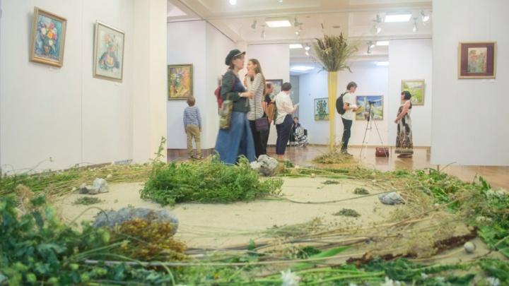 Жителей Самары бесплатно обучат сбору лекарственных трав