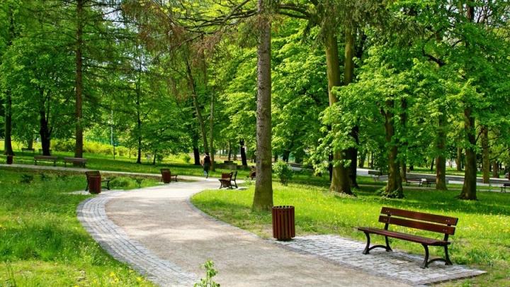 Парк на Адмирала Макарова приобретет портовый колорит