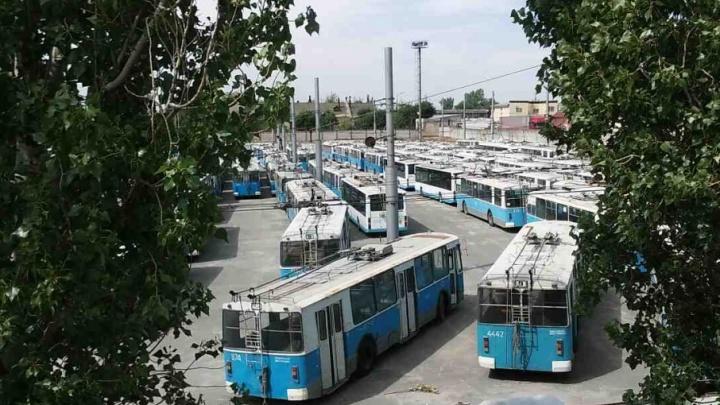 В Волгограде закрытое депо №1 превратилось в «кладбище троллейбусов»