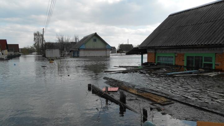 Паводок: из Москвы в Тюмень прилетели спасатели, люди жалуются на подорожание продуктов