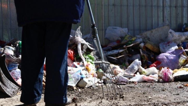 Убирают только после штрафов: в Челябинске проверили чистоту контейнерных площадок