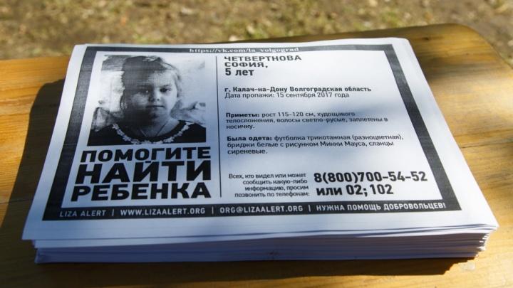 Поисковики начертили красный квадрат вокруг дома пропавшей Софьи Четвертновой
