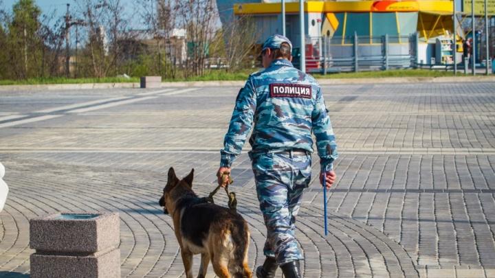 Полицейские Ростова накрыли точку продажи краснокнижной шемаи