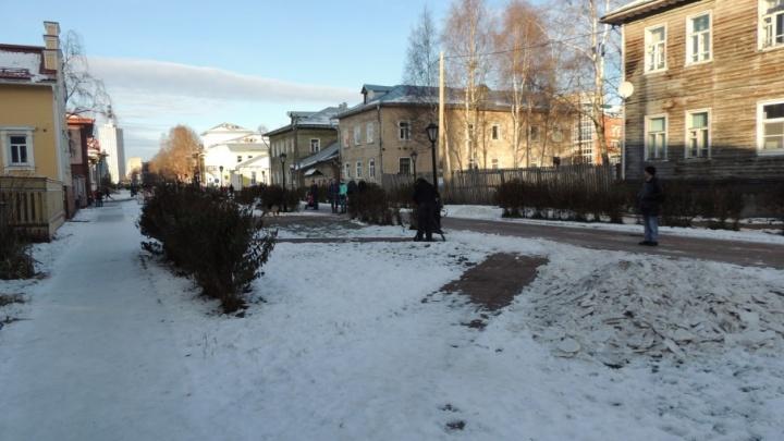 На Чумбаровке убрали будку пса, за которого переживает весь Архангельск