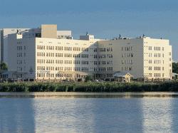 «Центру репродукции человека и ЭКО» – 20 лет