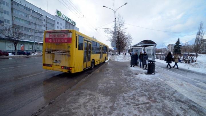 В Перми появится шесть новых автобусных остановок. Где они будут
