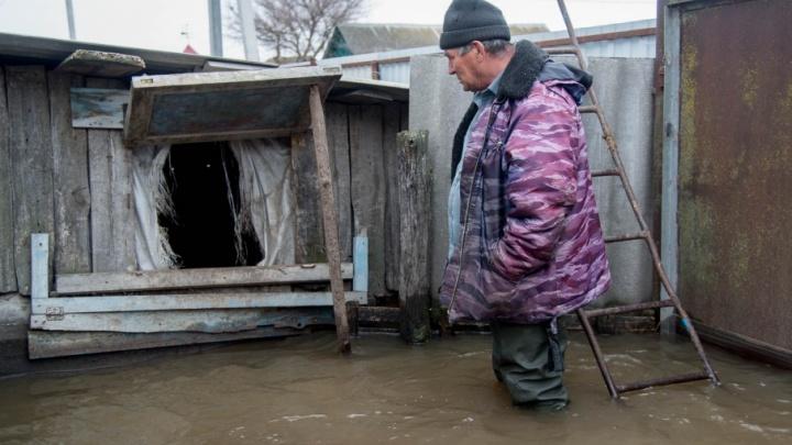 «Спасение утопающих — дело самих утопающих»: мифы и реальность большого наводнения в Волгоградской области