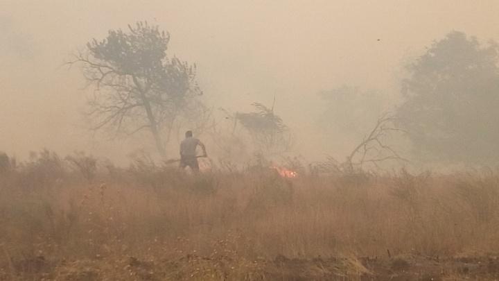 Спасатели сделали экстренное предупреждение из-за пожароопасности на Дону