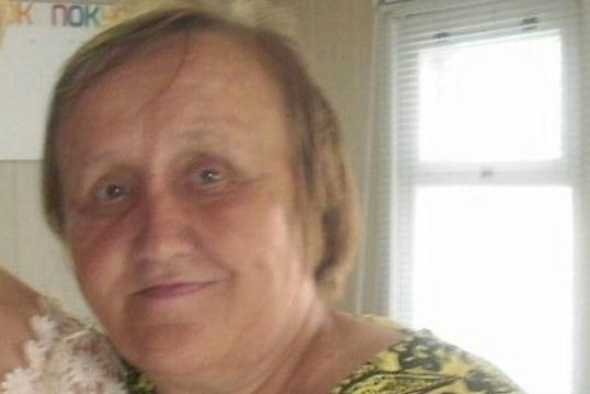 В Холмогорском районе набирают волонтеров для поисков пропавшей пенсионерки