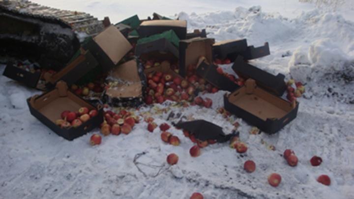 Ярославские таможенники уничтожили больше полтонны польских яблок