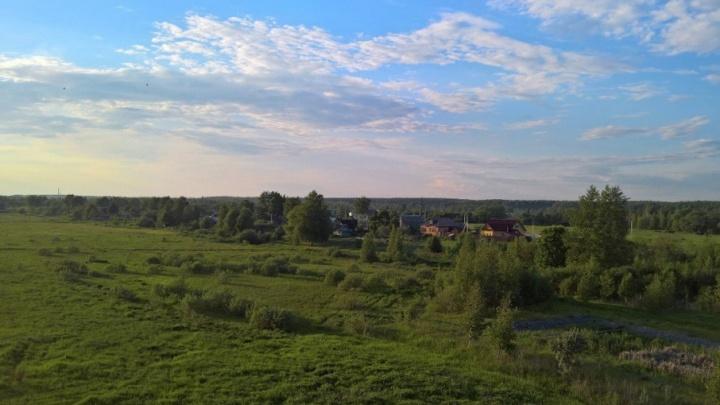 В Ярославской области власти скрывали от жителей уникальные участки природы