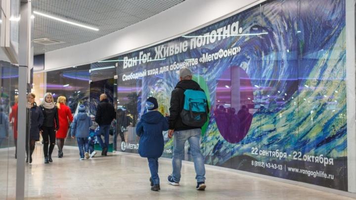 «Мегафон» подарил Архангельской области живые полотна Ван Гога