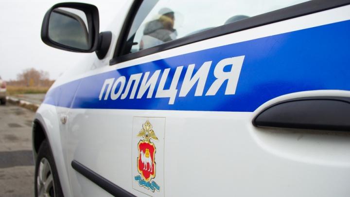 Семилетняя девочка пропала во время прогулки на Южном Урале