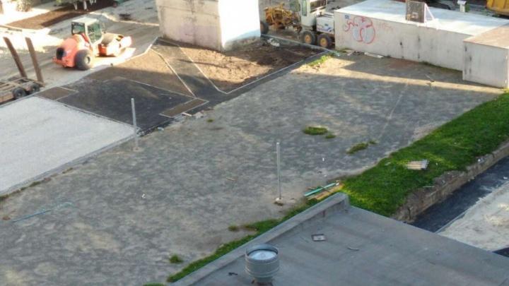 «Якобы двор облагораживают»: в Тюмени жильцы и коммунальщики повздорили из-за 20 уничтоженных деревьев