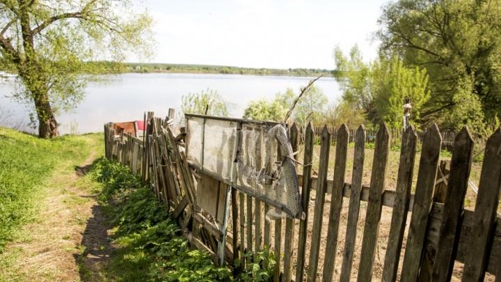 Ну и дыра: как ярославцы обзавелись личным пляжным раем