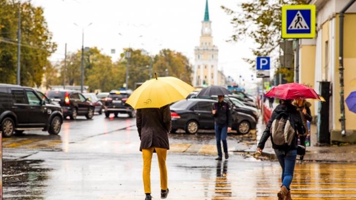Дожди и штиль: какую погоду прогнозируют синоптики