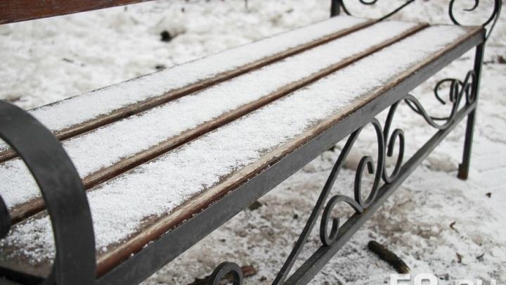 Мокрый снег: в Прикамье в четверг ожидаются сильные заморозки
