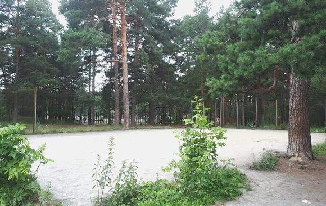 В центральном парке Челябинска убрали бесплатную площадку для волейбола