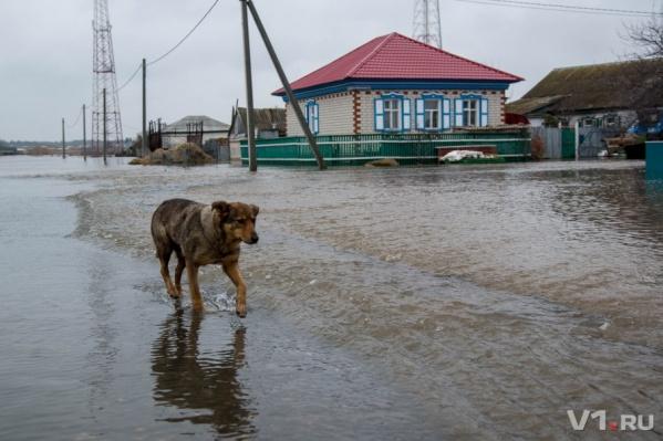 В регионе до сих пор устраняют последствия страшного потопа