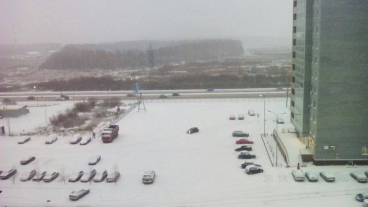 У ГИБДД на Московском тракте продали 8,4 га земли под строительство нового микрорайона