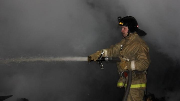 Житель Приморского района, чтобы спасти кафе, лично побежал за пожарными