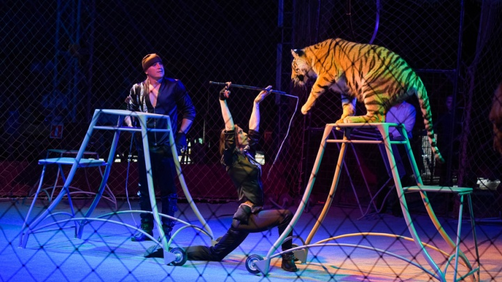 Московский цирк-шапито привез в Челябинск одиннадцать фур радости
