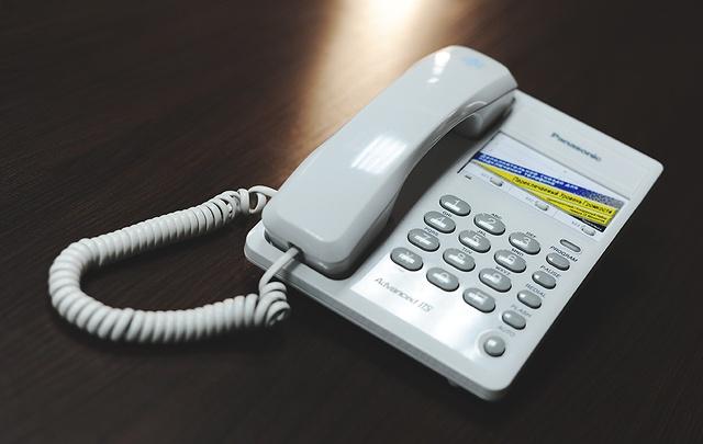 Тюменцы смогут задать вопросы на тему клещей по телефонам горячей линии