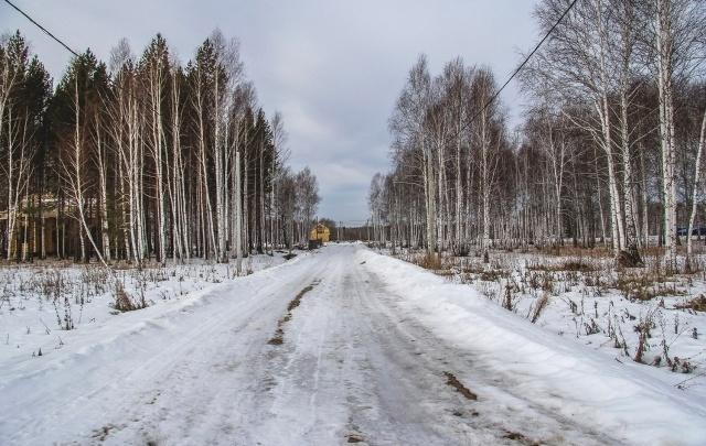 Два земельных участка вблизи леса всего за 72 000 рублей