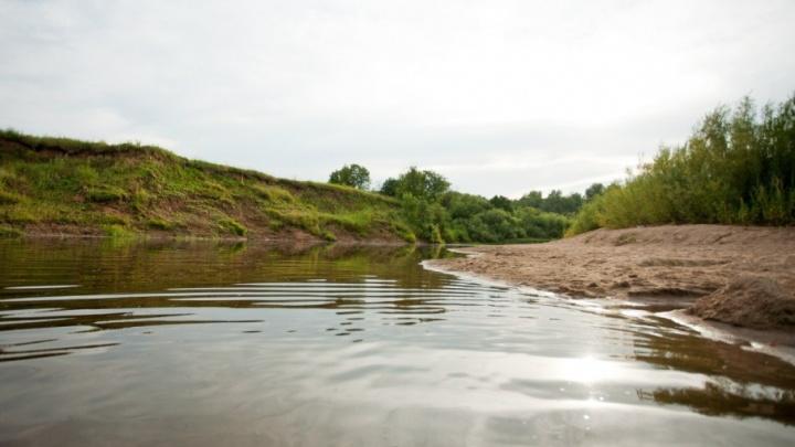Молодой мужчина утонул в реке в Ярославской области