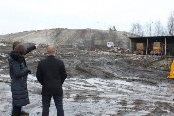 За московский мусор обещают заплатить 500 миллионов