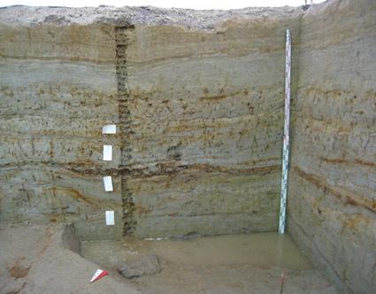 Профиль южной стенки участка 1 с отбором проб на споропыльцевой, геохимический, радиоуглеродный, гидродинамические условия осадконакопления. Вид с севера