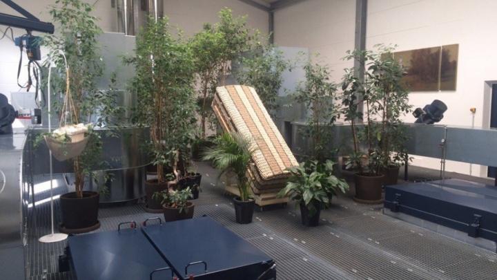 Двое инвесторов готовы построить крематорий под Тюменью: возможные эскизы проекта