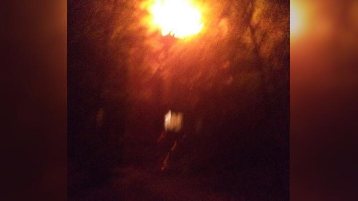 В Ростове загорелся дом: пожарные вытащили из квартиры женщину и кошку