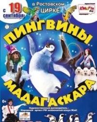 Ростовский цирк представляет «Пингвинов Мадагаскара»