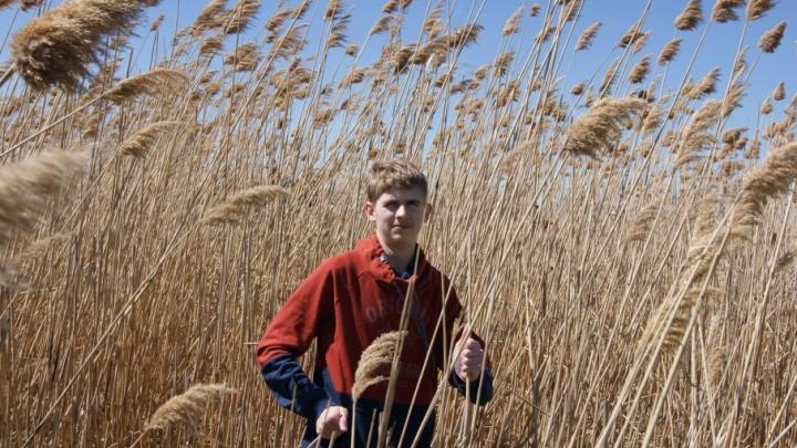 Северодвинский школьник выиграл 50 тысяч рублей на свой первый бизнес