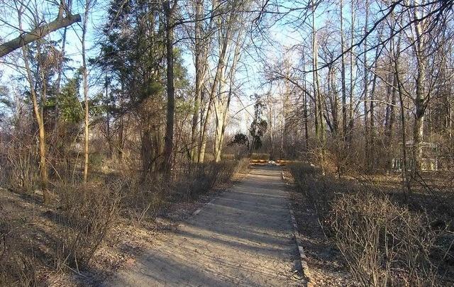 В Волгограде собираются развивать Красноармейский дендрарий
