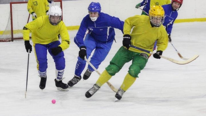 Региональный чемпионат по мини-хоккею с мячом стартовал в Поморье