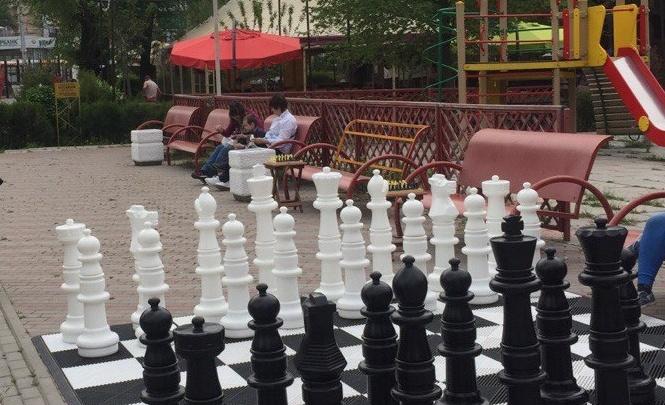 Огромные шахматы установили в Ростове в парке Островского