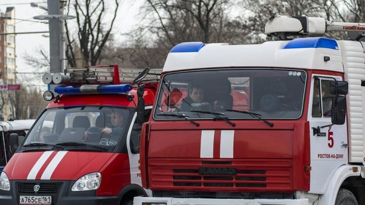 При пожаре на Буденновском конном заводе погибли человек и 14 лошадей