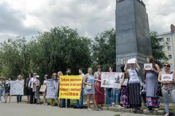 В руках у активистов были плакаты с лозунгами акции