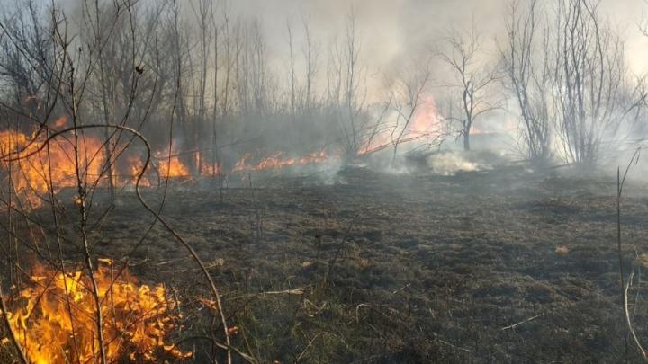 На Дону продлили режим чрезвычайной пожароопасности