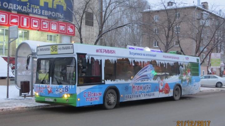 В Перми появились «новогодние» автобусы