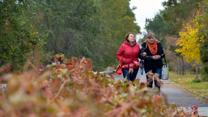 Красный ноябрь: осенний Волгоград «переоделся» в яркие тона