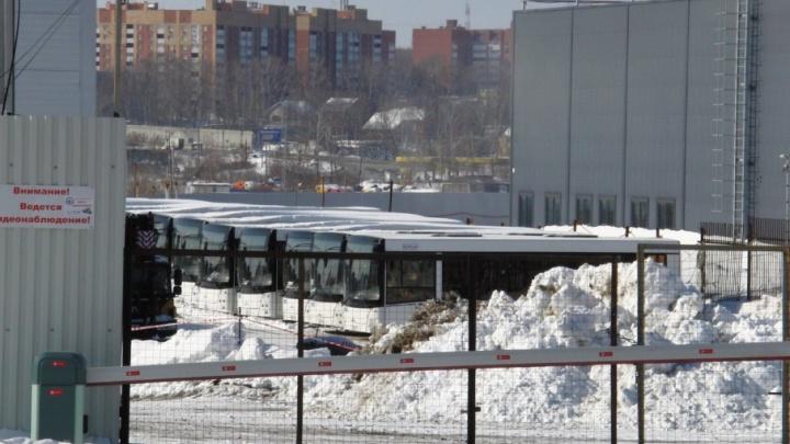 В Самару доставили несколько десятков новых автобусов МАЗ