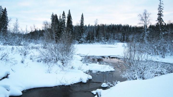 Синоптики: лед на реках Поморья встанет к концу второй декады декабря