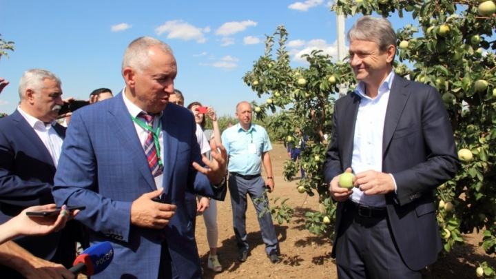 В «Садах Придонья» с рабочим визитом побывал министр сельского хозяйства России