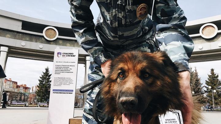 Больше 140  тюменцев сказали полицейским «Спасибо за службу!»