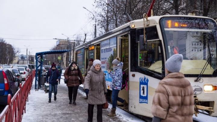 «Вы нам мешаете»: чиновники попросили автомобилистов пересесть на трамвай